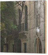 Argentinian Street Lamp Wood Print