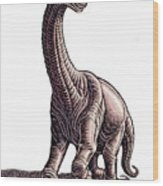 Argentosaurus Wood Print
