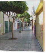 Arica Chile Wood Print