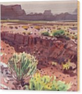 Arizona Arroyo Wood Print