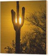 Arizona Cactus #1 Wood Print