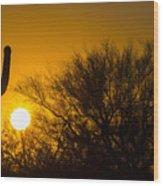 Arizona Cactus #2 Wood Print