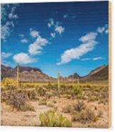 Arizona Desert #2 Wood Print