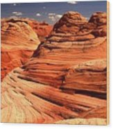 Arizona Desert Landscape Wood Print