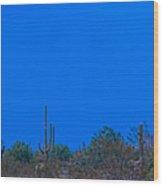 Arizona Desert Landscape  Wood Print