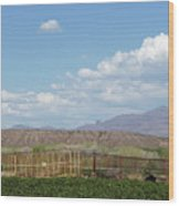 Arizona Farming Wood Print