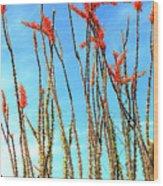 Arizona Nature Wood Print