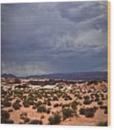 Arizona Rainy Desert Landscape Wood Print