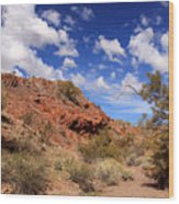 Arizona Red Rock Wood Print
