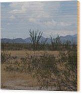 Arizona Rest Stop Wood Print
