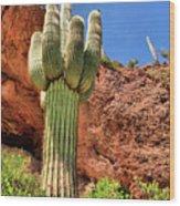 Arizona Saguaro #1 Wood Print