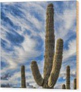 Arizona Saguaro  Wood Print