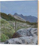 Arizona Sentinel Wood Print