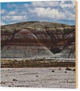 Arizona's Painted Desert #3 Wood Print