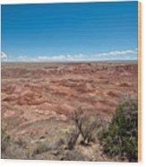 Arizona's Painted Desert Wood Print