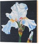 Arlene's Iris Wood Print