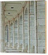 Arlington Cemetary Wood Print