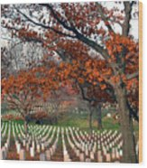 Arlington Cemetery In Fall Wood Print by Carolyn Marshall