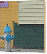 Arlington Hydrant Wood Print