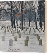 Arlington Winter Snow Wood Print