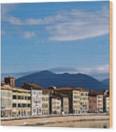Arno River Pisa Italy Wood Print