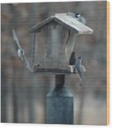 Around The Birdhouse Wood Print