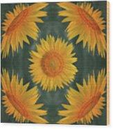 Around The Sunflower Wood Print