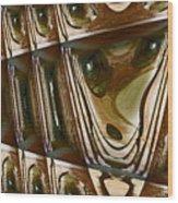 Arrowhead Feather Wood Print