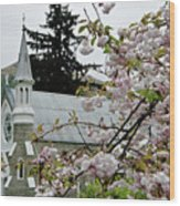 Arrowtown Church On A Rainy Day, New Zealand Wood Print