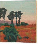 Arroyo Grande Vista Wood Print