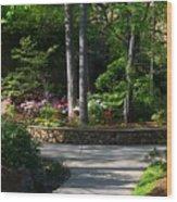 Art Center Garden 1 Wood Print