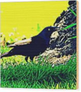 Art Deco Grackle Wood Print