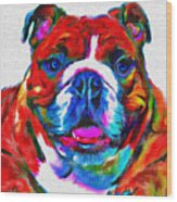 Art Dogportrait Wood Print