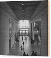 Art Institute Of Chicago Modern Wing Wood Print