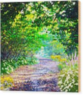 Art Rendered Country Pathway Wood Print