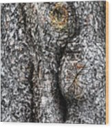 Art Within A Tree Wood Print