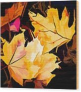 Artful Maple Leaves Wood Print