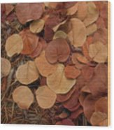 Artfully Scattered Sea Grape Leaves Wood Print