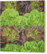 Artisinal Greens Madrid Spain Wood Print
