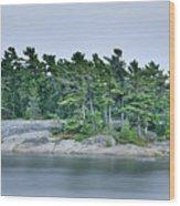 Artistic Granite And Trees  Wood Print