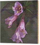 Artistic In Pink Wood Print