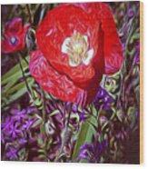Artistic Kentucky Red Poppy Wood Print