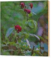 Artistic Last Rose Wood Print