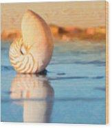 Artistic Nautilus Wood Print