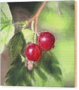 Artistic Panterly Two Wild Goosberries Wood Print