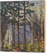 Artist's Camp, Canoe Lake, Algonquin Park Wood Print