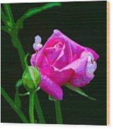 Artrose Wood Print
