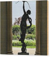 Arts Sculpture California Museum   Wood Print