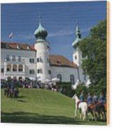 Artstetten Castle In June Wood Print