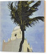 Aruba Palm Wood Print